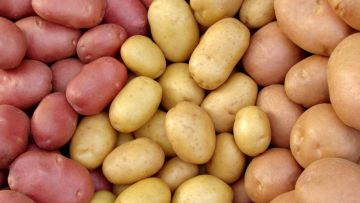 Interesting facts about potatoes