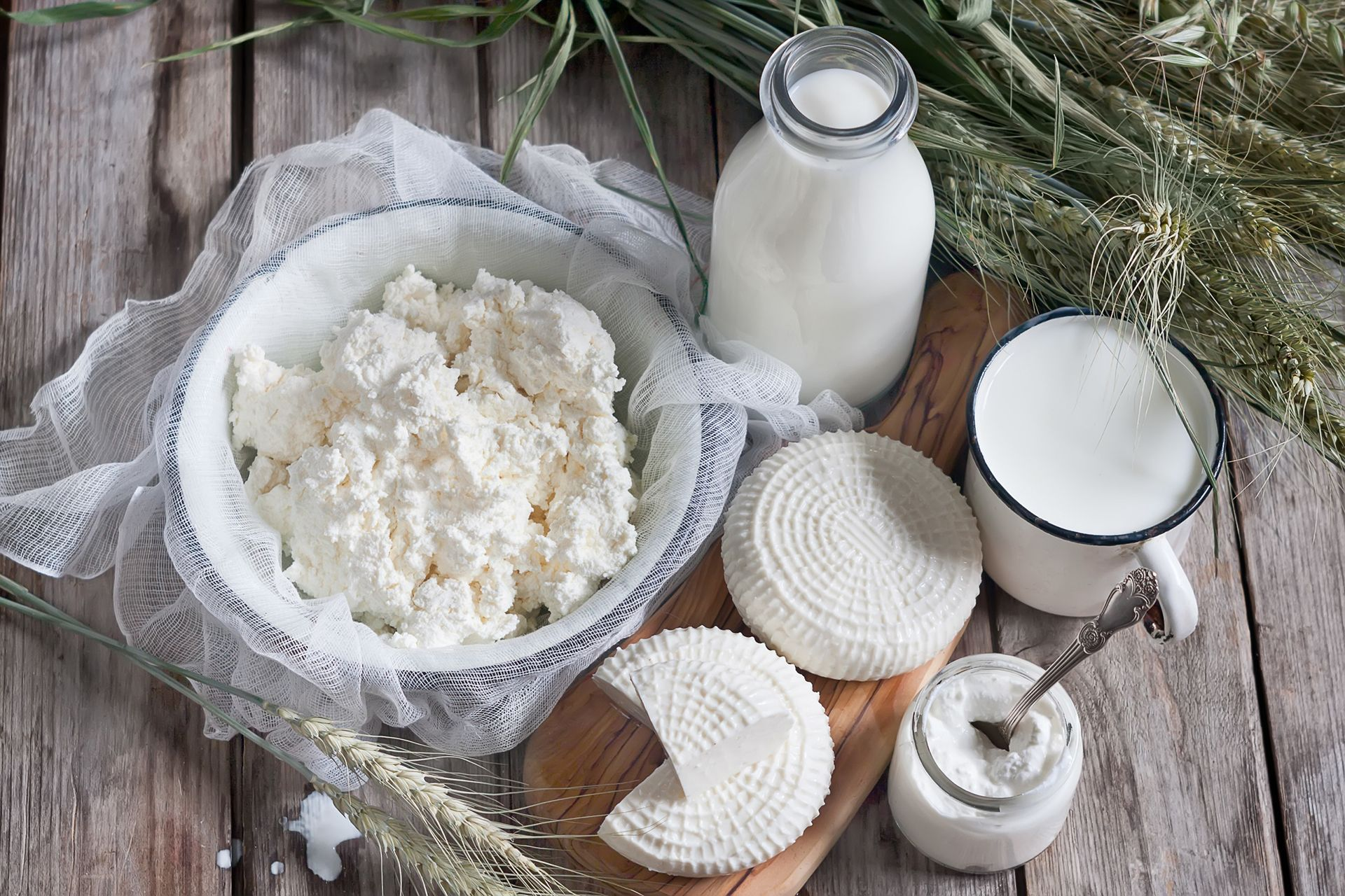 White cheese from cow's milk